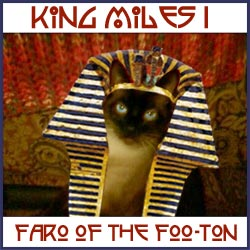 Miles Meezer, Faro of the Foo-ton